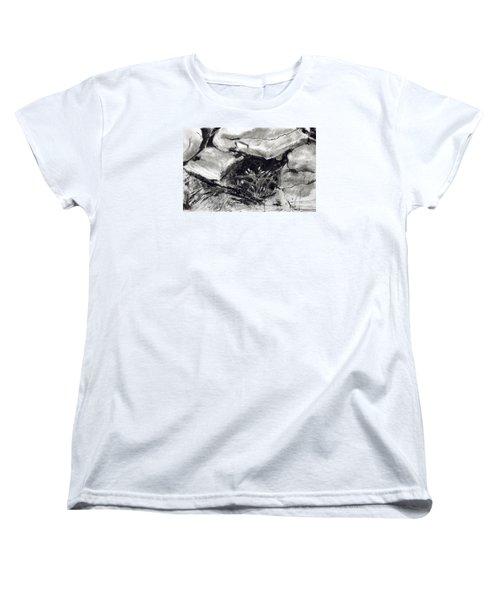 Bridget's Well Women's T-Shirt (Standard Cut)