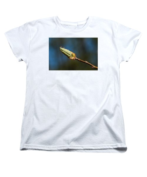 Women's T-Shirt (Standard Cut) featuring the photograph Buds With Water Drops by Paul Freidlund