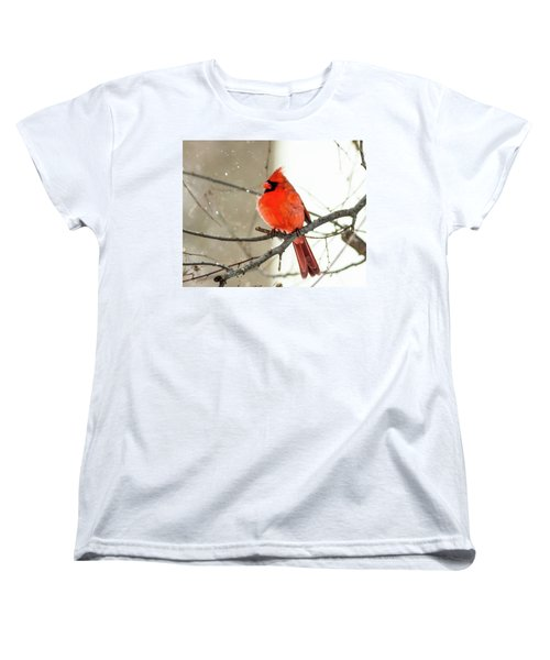 Cardinal In The Snow Women's T-Shirt (Standard Cut) by Ursula Lawrence