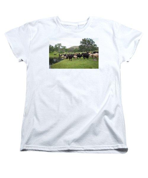 Cattle Women's T-Shirt (Standard Cut)