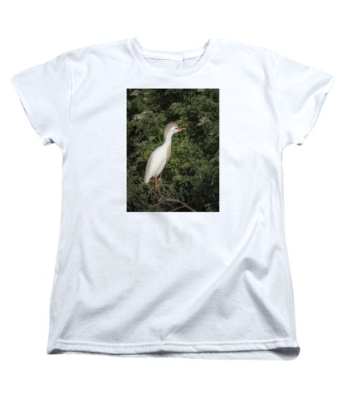 Women's T-Shirt (Standard Cut) featuring the photograph Cattle Egret by Tyson and Kathy Smith