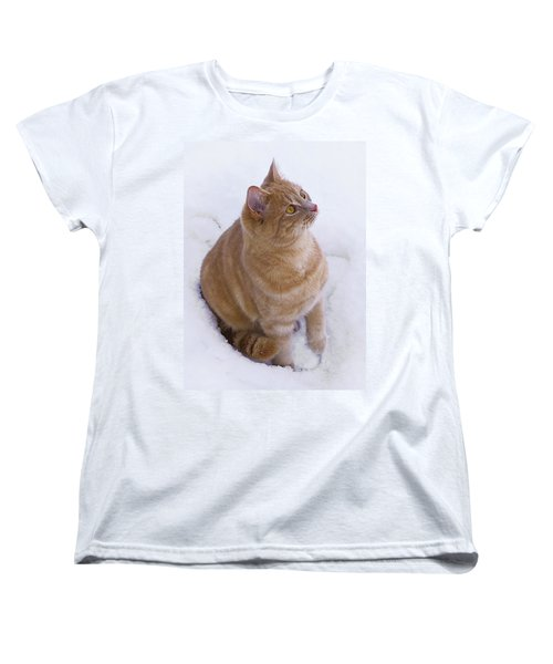 Christmas Cat Women's T-Shirt (Standard Cut) by Jacqi Elmslie