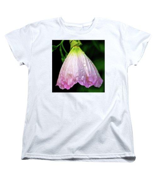 Cinderella's Dress Women's T-Shirt (Standard Cut) by Robert FERD Frank
