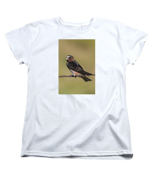 Women's T-Shirt (Standard Cut) featuring the photograph Cliff Swallow by Gary Lengyel