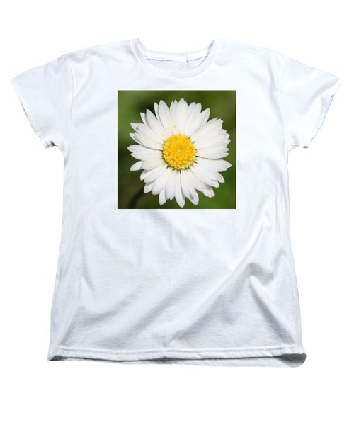Closeup Of A Beautiful Yellow And White Daisy Flower Women's T-Shirt (Standard Cut) by Tracey Harrington-Simpson