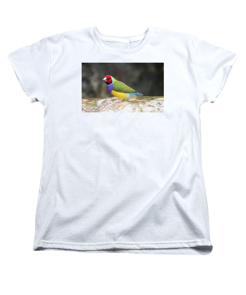 Colorful Lady Gulian Finch  Women's T-Shirt (Standard Cut) by Penny Lisowski