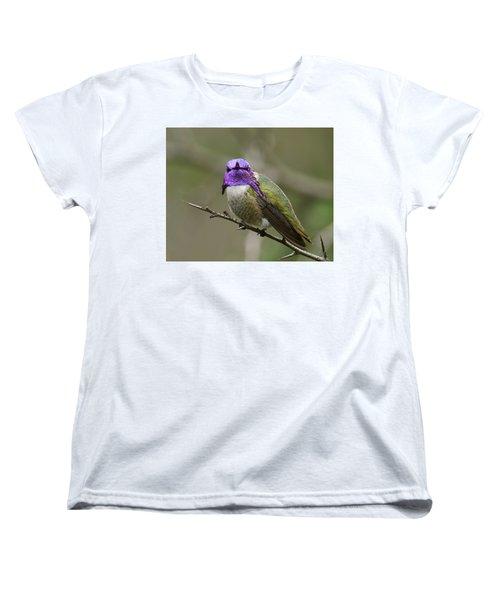 Costa's Hummingbird, Solano County California Women's T-Shirt (Standard Cut) by Doug Herr