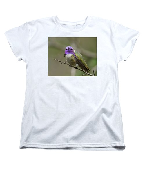Costa's Hummingbird, Solano County California Women's T-Shirt (Standard Cut)