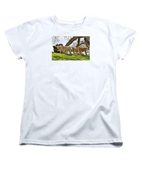 Cows Under Oak #2 Women's T-Shirt (Standard Cut) by Amy Fearn