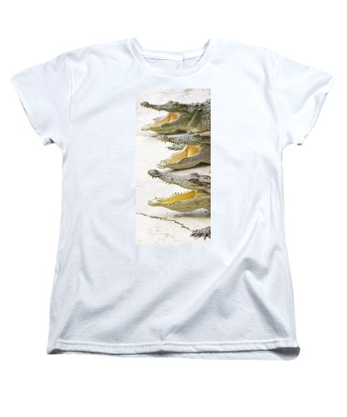 Crocodile Choir Women's T-Shirt (Standard Cut) by Jorgo Photography - Wall Art Gallery
