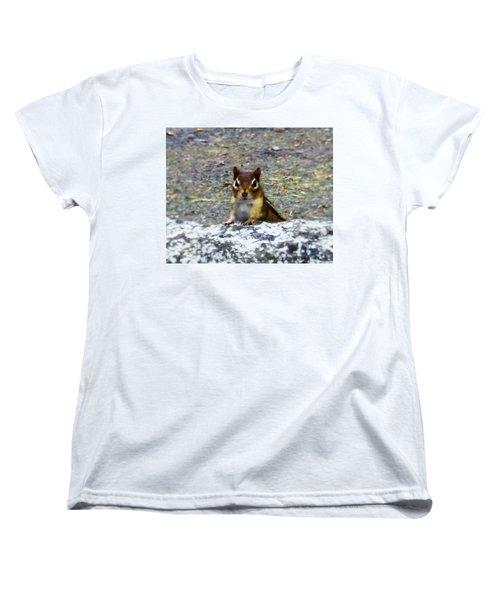 Curious Chipmunk Women's T-Shirt (Standard Cut)