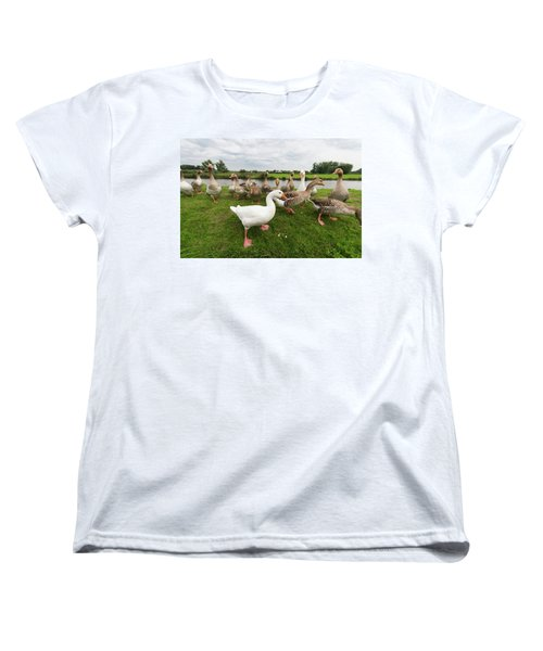 Curious Geese Women's T-Shirt (Standard Cut) by Hans Engbers
