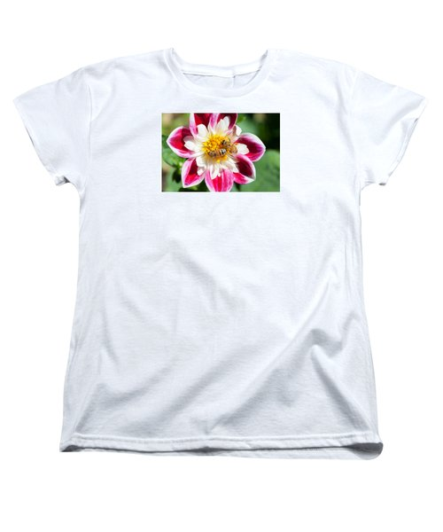 Dahlia Bee Buffet Women's T-Shirt (Standard Cut)