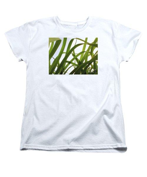 Dancing Bamboo Women's T-Shirt (Standard Cut) by Rebecca Harman
