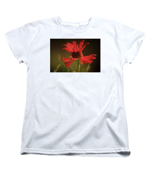 Double Petals Women's T-Shirt (Standard Cut) by Donna G Smith
