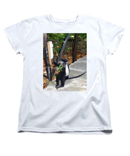 Electrical Work - Monkey Power Women's T-Shirt (Standard Fit)