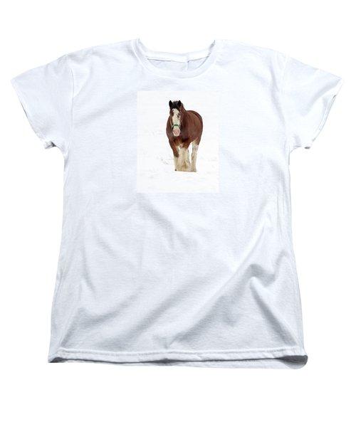 Women's T-Shirt (Standard Cut) featuring the photograph Equus Caballus.. by Nina Stavlund