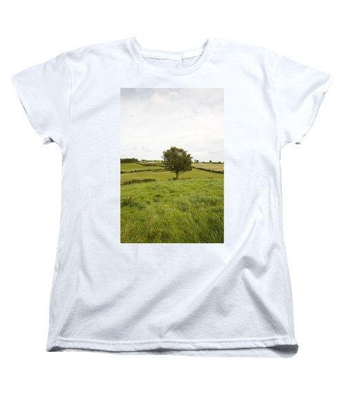 Fairy Tree In Ireland Women's T-Shirt (Standard Cut)