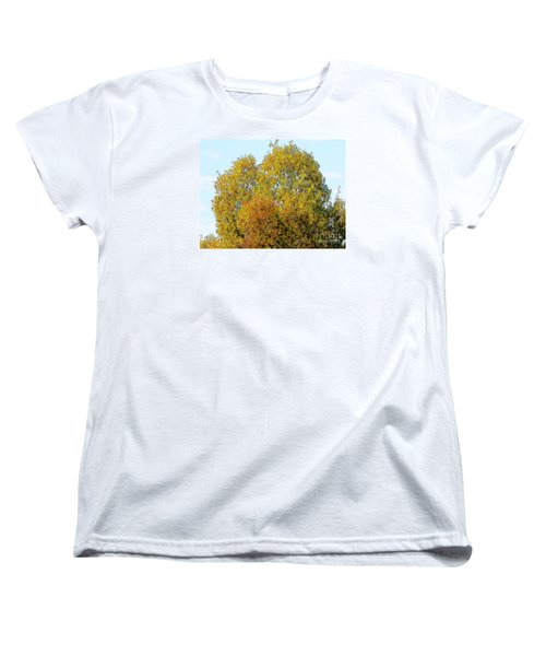 Fall Tree Women's T-Shirt (Standard Cut) by Craig Walters