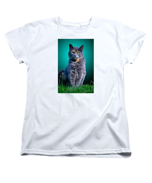 Feline Shine Women's T-Shirt (Standard Cut) by Brian Stevens
