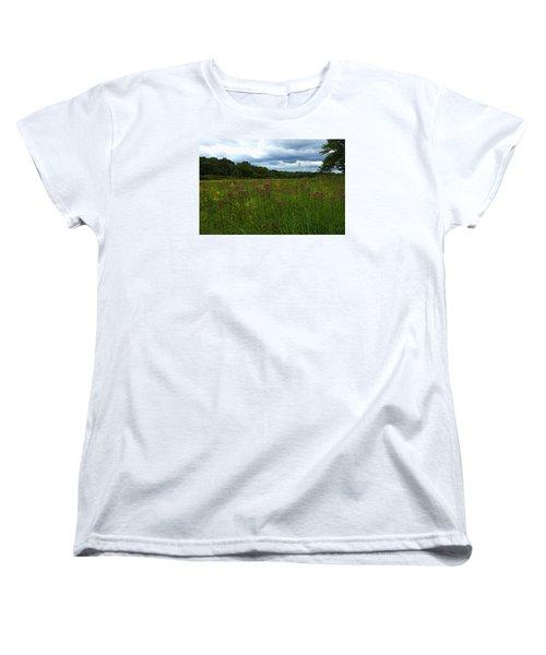 Field Of Color Women's T-Shirt (Standard Cut)