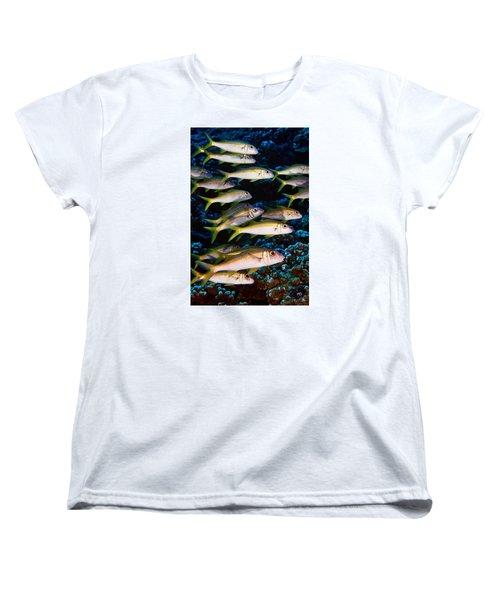 Fla-150811-nd800e-26035-color Women's T-Shirt (Standard Cut) by Fernando Lopez Arbarello