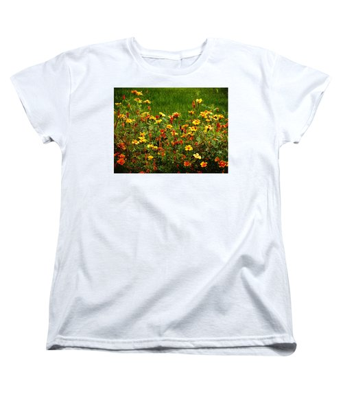 Flowers In The Fields Women's T-Shirt (Standard Cut) by Joseph Frank Baraba