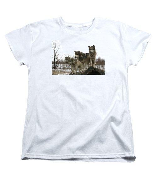 Four Pack Women's T-Shirt (Standard Cut) by Shari Jardina
