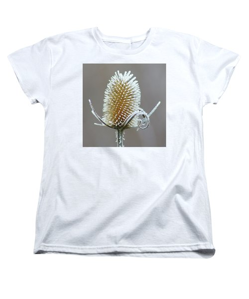Frosted Teasel Women's T-Shirt (Standard Cut) by Nikolyn McDonald