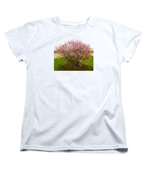 Women's T-Shirt (Standard Cut) featuring the photograph Frosty Fire Bush by Spyder Webb