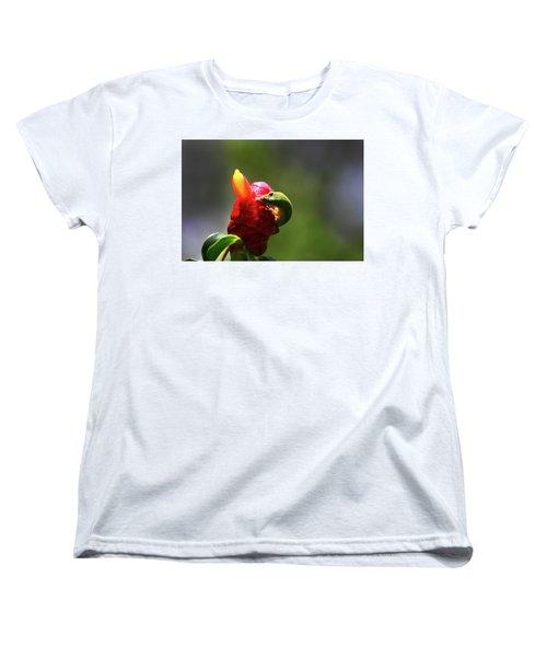 Women's T-Shirt (Standard Cut) featuring the photograph Gecko #2 by Anthony Jones