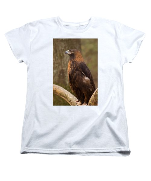 Golden Eagle Resting On A Branch Women's T-Shirt (Standard Cut) by Chris Flees