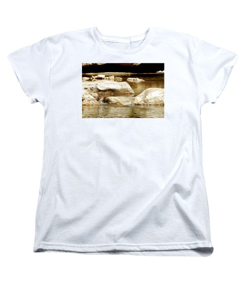 Golden Stream Women's T-Shirt (Standard Cut) by Nancy Landry
