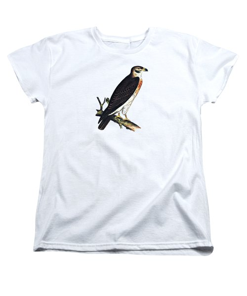 Hawk Swainsons Hawk Women's T-Shirt (Standard Cut)