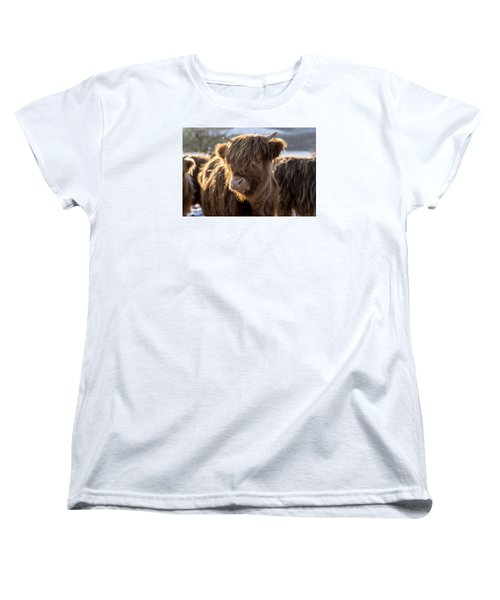 Highland Baby Coo Women's T-Shirt (Standard Cut) by Jeremy Lavender Photography