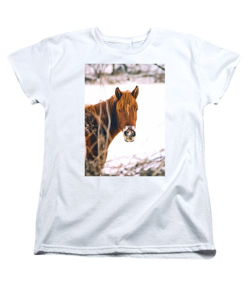 Horse In Winter Women's T-Shirt (Standard Cut) by Steve Karol
