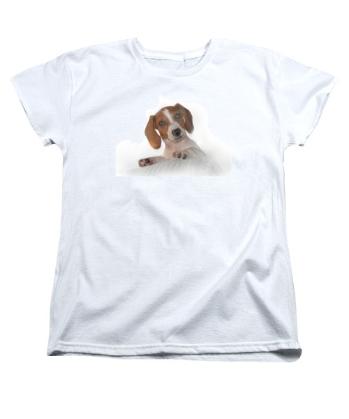 Women's T-Shirt (Standard Cut) featuring the photograph Inquisitive Dachshund by David and Carol Kelly