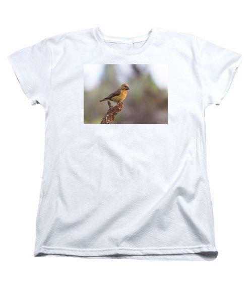 Juvenile Male Red Crossbill Women's T-Shirt (Standard Cut) by Doug Lloyd