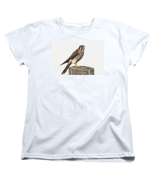 Women's T-Shirt (Standard Cut) featuring the photograph Kestrel Portrait by Robert Frederick