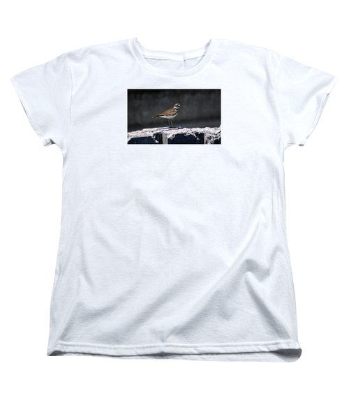 Killdeer Women's T-Shirt (Standard Cut) by M Images Fine Art Photography and Artwork