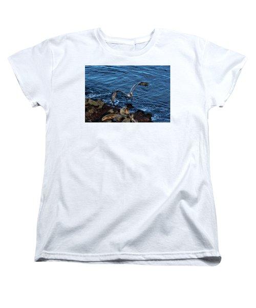 Landing Fly-by Women's T-Shirt (Standard Cut) by James David Phenicie