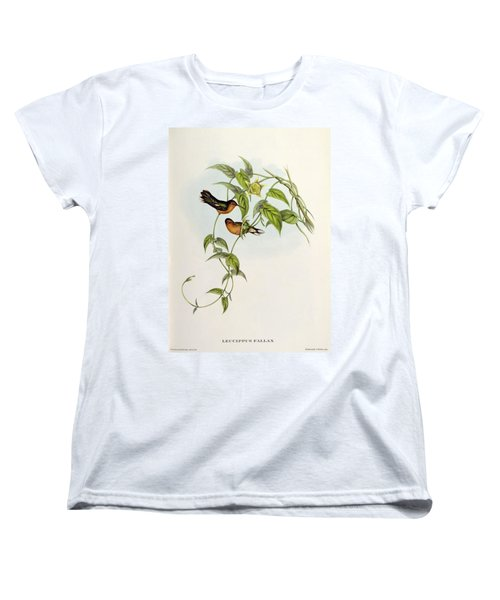 Leucippus Fallax Women's T-Shirt (Standard Cut) by John Gould