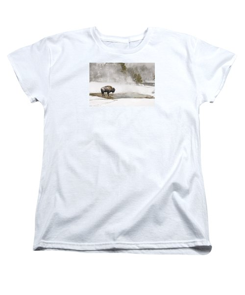 Women's T-Shirt (Standard Cut) featuring the photograph Bison Keeping Warm by Gary Lengyel