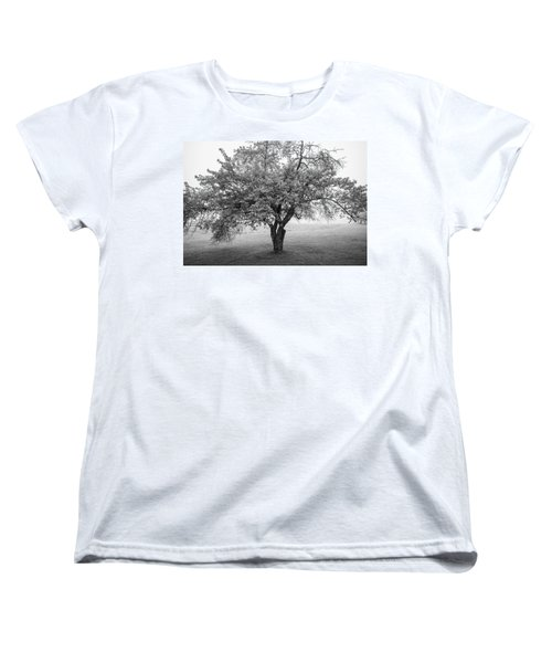 Women's T-Shirt (Standard Cut) featuring the photograph Maine Apple Tree In Fog by Ranjay Mitra
