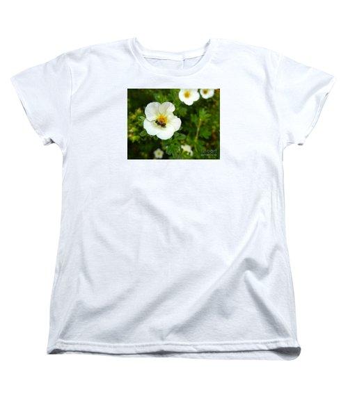 Massachusetts Carpenter Bee Women's T-Shirt (Standard Cut) by KD Johnson