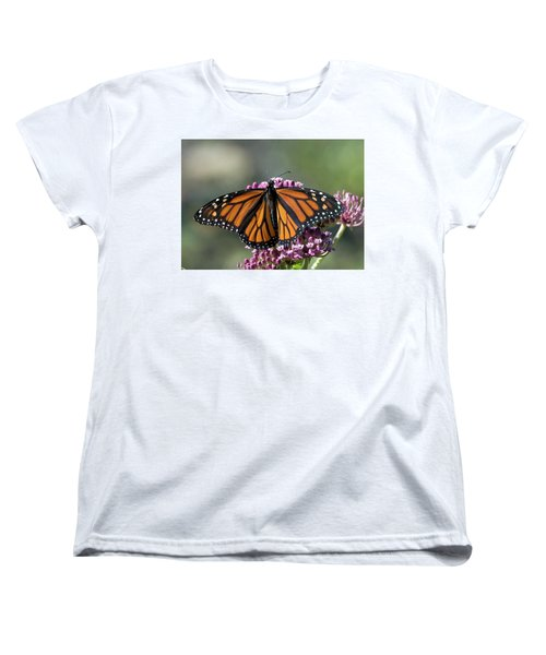 Monarch Butterfly Women's T-Shirt (Standard Cut) by Stephen Flint