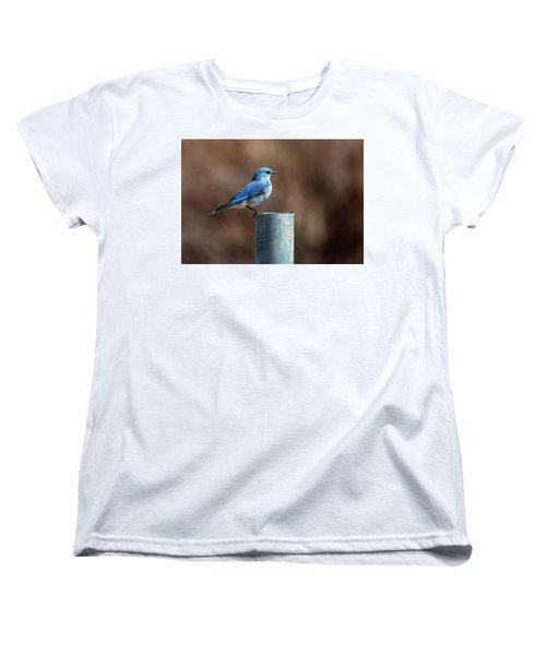 Mountain Bluebird Women's T-Shirt (Standard Cut) by Eric Nielsen