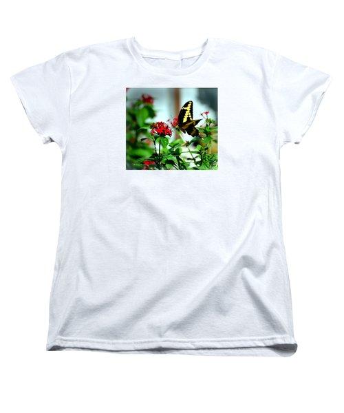 Nature's Beauty Women's T-Shirt (Standard Cut) by Edgar Torres