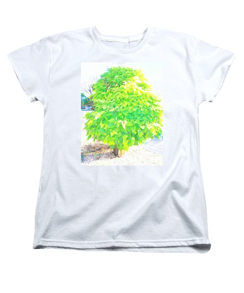 Women's T-Shirt (Standard Cut) featuring the photograph Obese American Tree by Lenore Senior