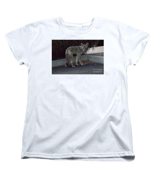 On The Prowl 1 Women's T-Shirt (Standard Cut) by Anne Rodkin